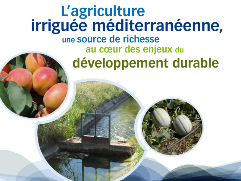 publication-agriculture-irrigation