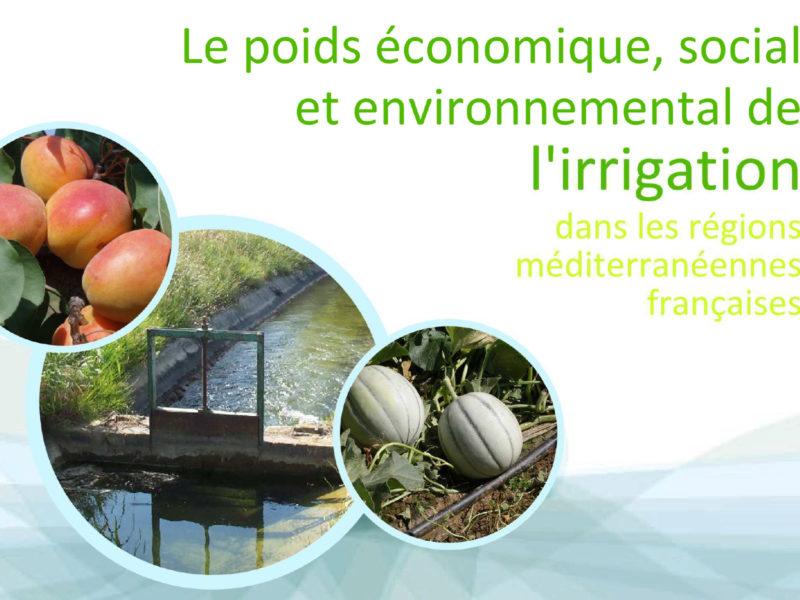 publication-poids-economique-irrigation