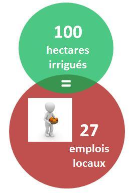 L'irrigation est un vrai moteur d'emplois dans nos régions
